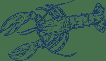 Illustrated blue lobster