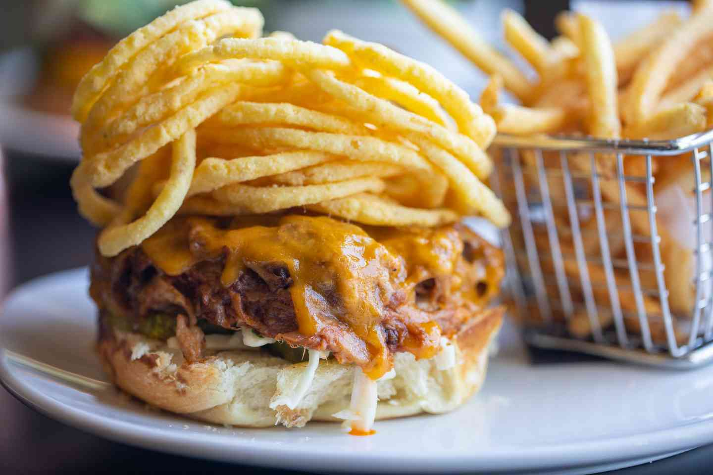 BBQ pulled pork sandwich and fries
