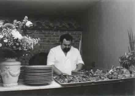 mario in the kitchen