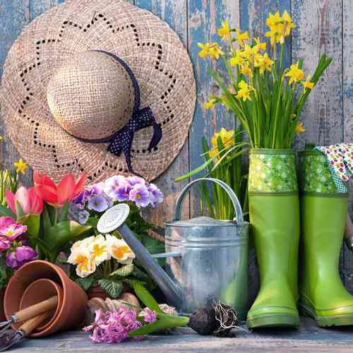 garden tools and flowers