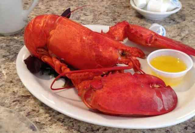 Cooked lobster and butter