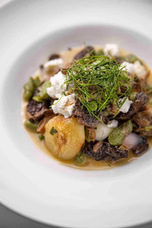 Duck Confit & Morel Mushroom Cavatelli Pasta