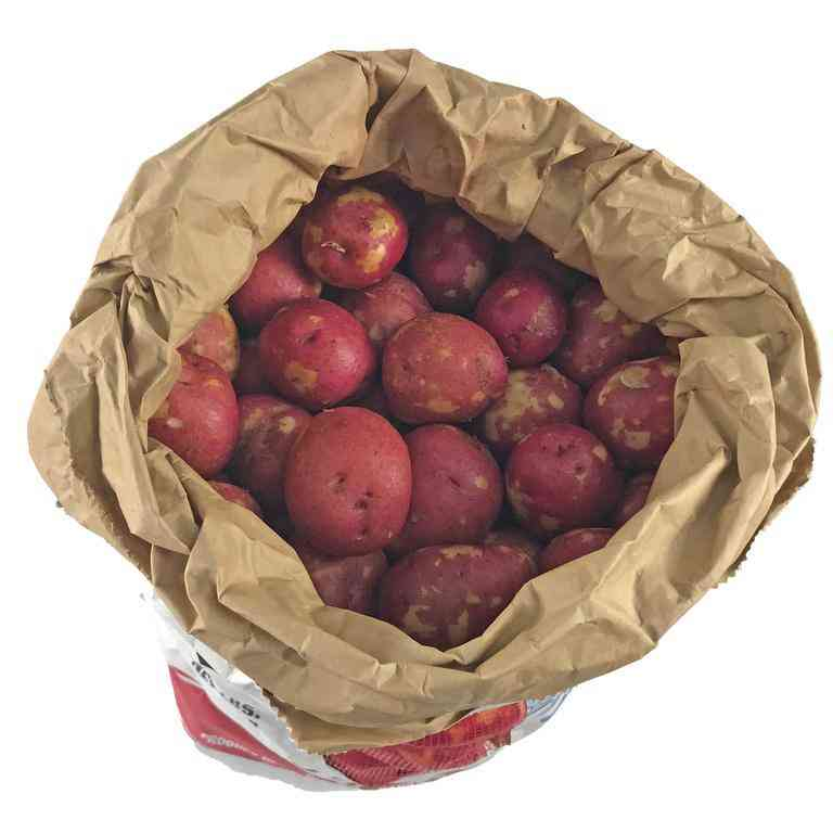 Fresh Red Potatoes