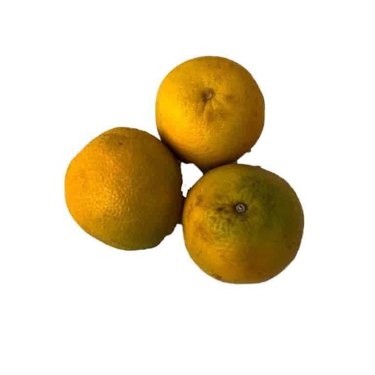 Fresh Fancy Oranges