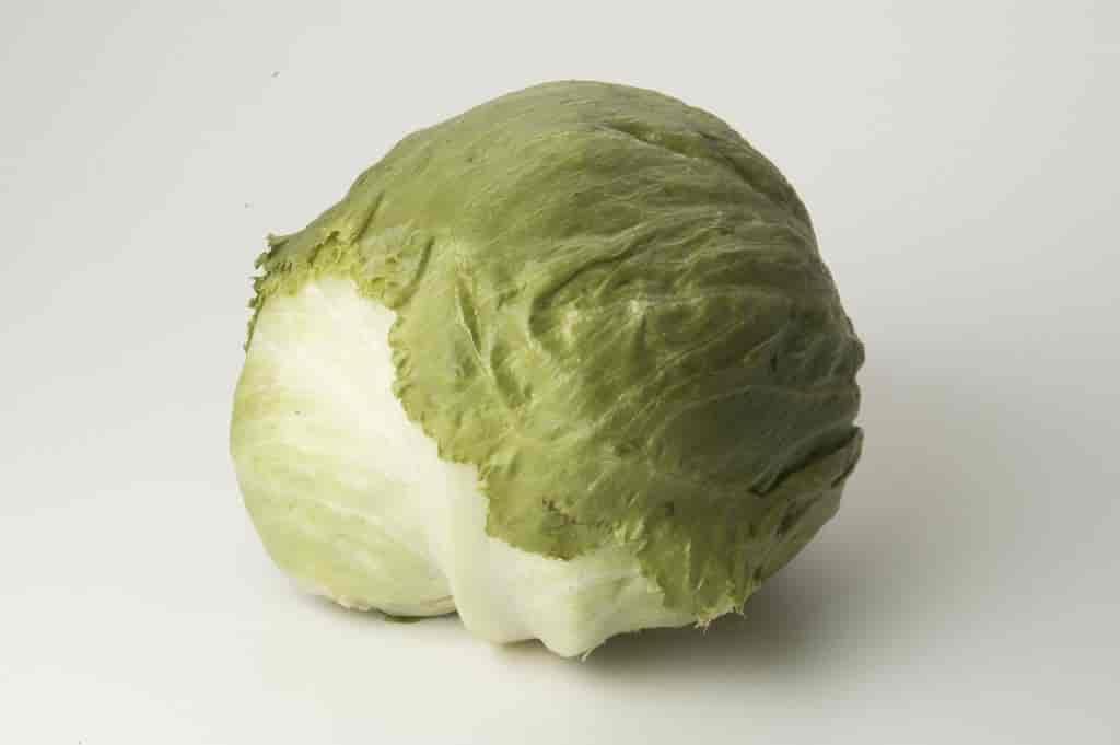 Trimmed Fresh Iceberg Lettuce
