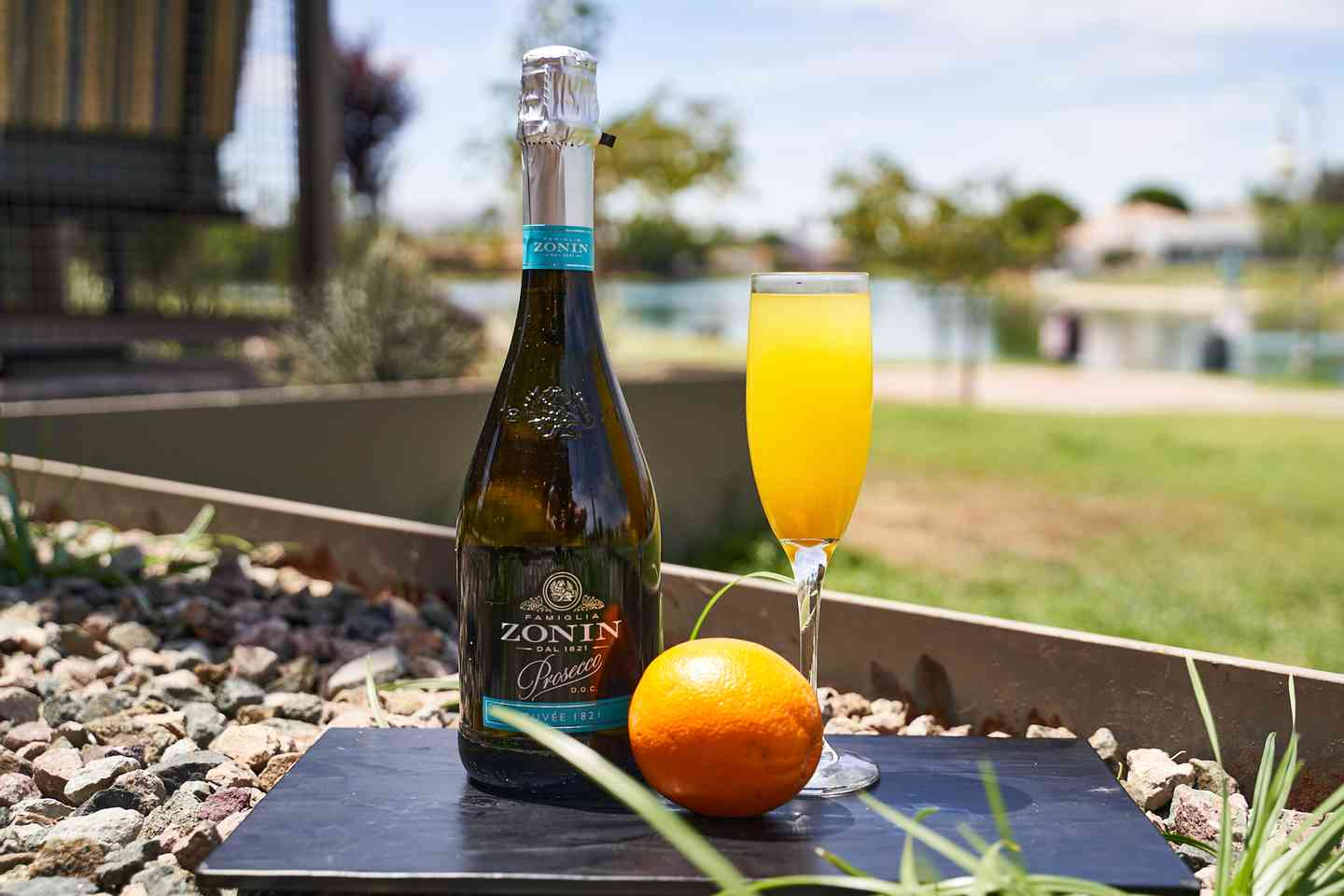 Build Your Own Mimosa