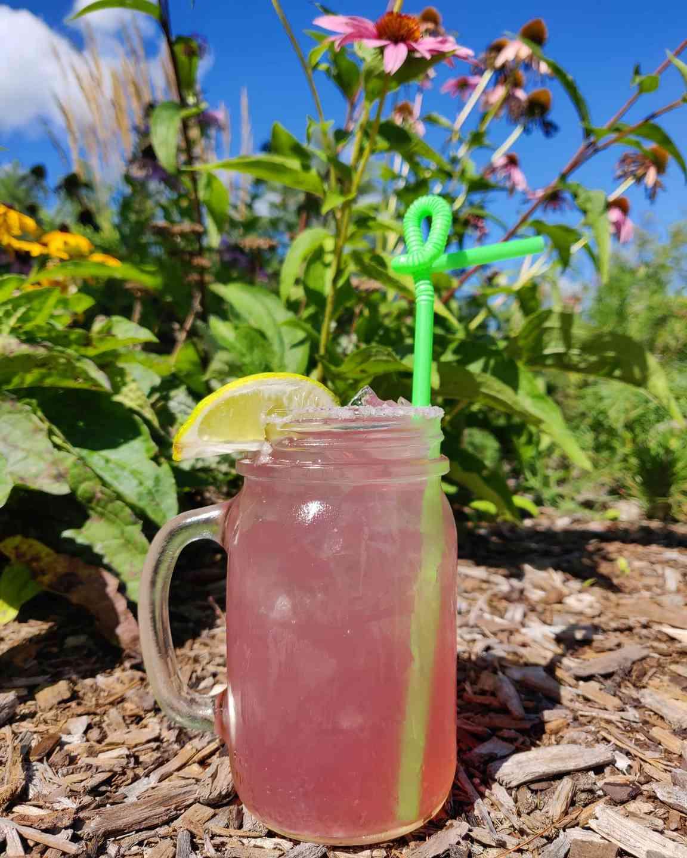Barn Door Hostel Lemonade