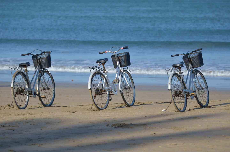Dinner & Bike Package