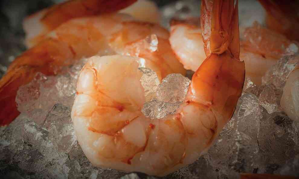 Fresh Shrimp on Ice