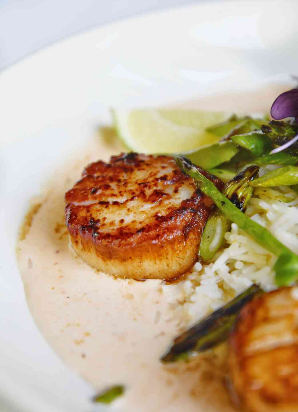 Day Boat Sea Scallops