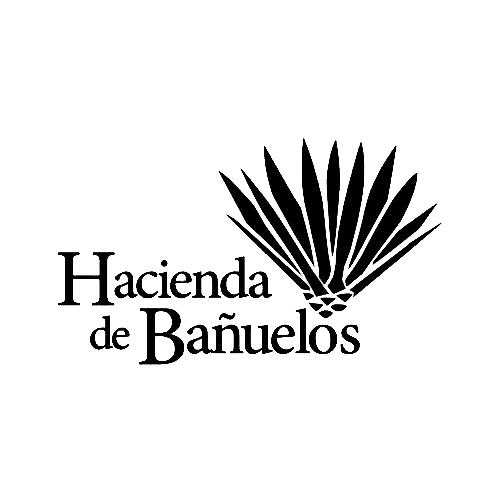 Hacienda de Bañuelos