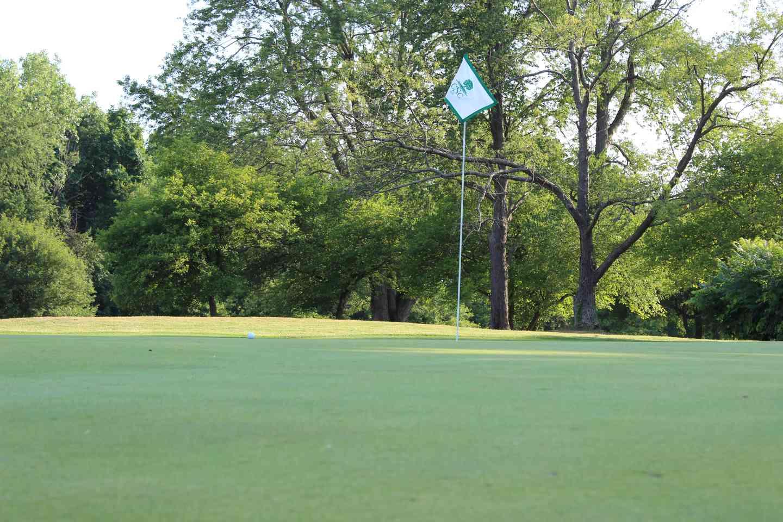 Flag in a golf hole