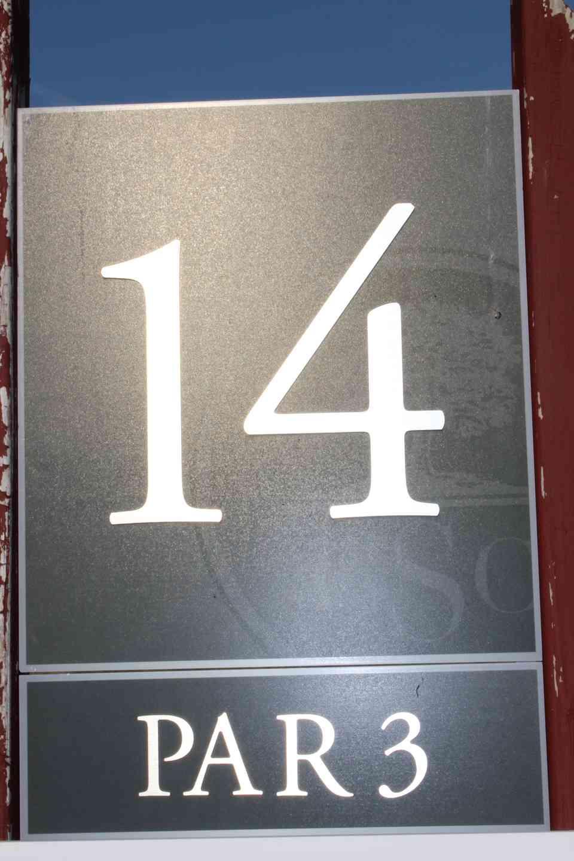 Hole 14, par 3