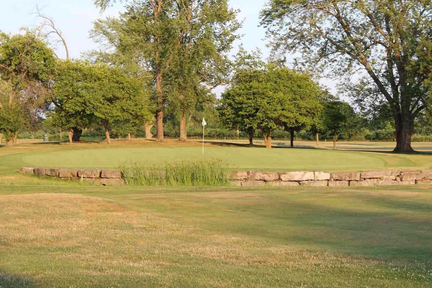 View of hole 8