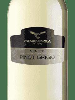 Campagnola, Pinot Grigio