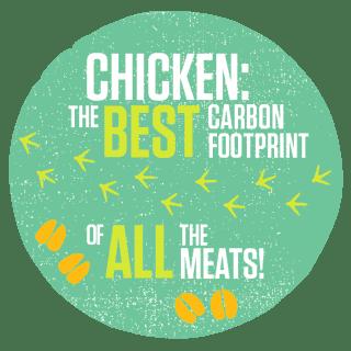 Chicken Carbon Footprint Icon