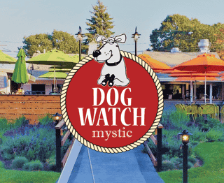 dog watch cafe mystic