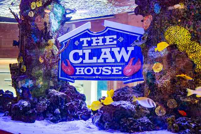 Close up of aquarium with The Claw House sign