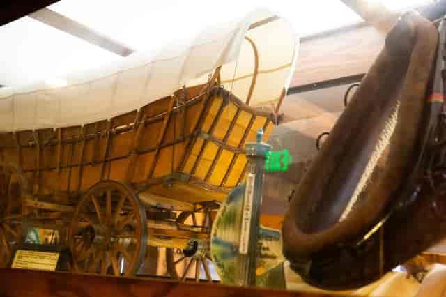 longhorn interior