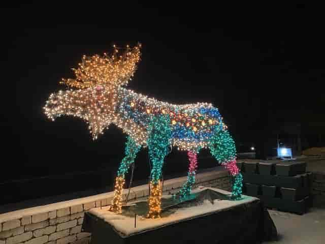 light up moose