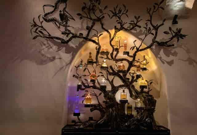 Tequila Tree Javier's Las Vegas Copyright © 2019 SNAPTASTE® INC.