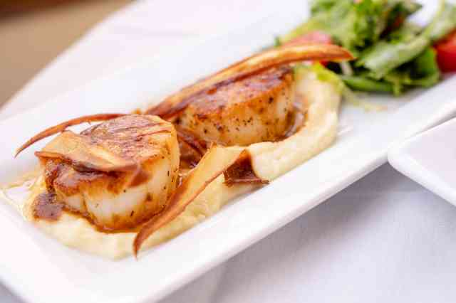 Scallops with a side salad