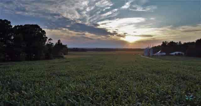 facebook photo 3 sunrise