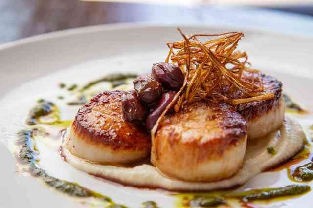 day boat scallops
