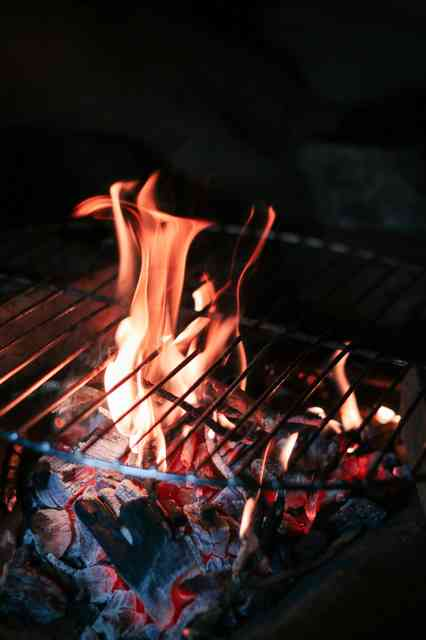 Passion of barbecue