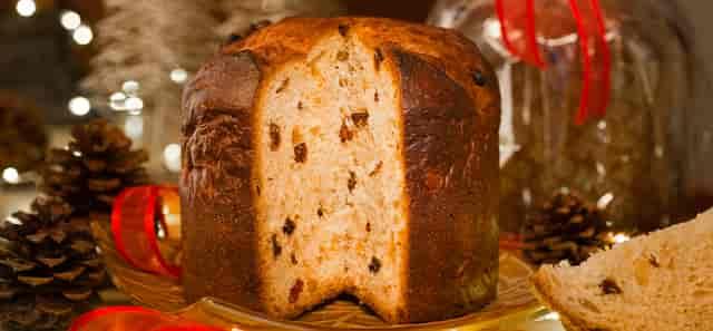 Urth Caffe Panettone bread