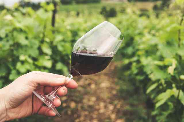 Common Wine Myths – Debunked.