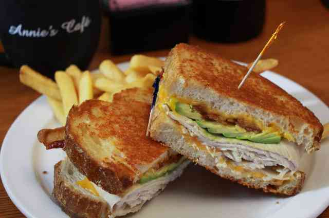 turkey sandwich and fries
