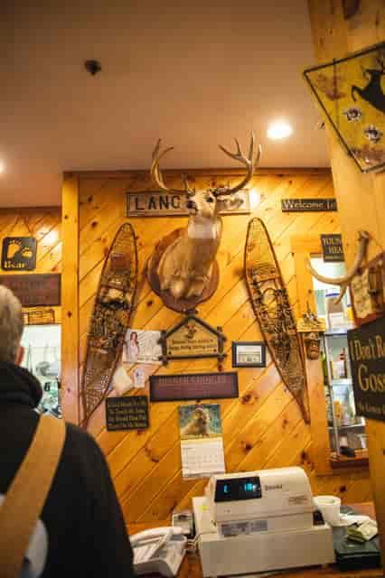 Deer inside Michael's Bridge Diner
