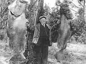 man with two large fish