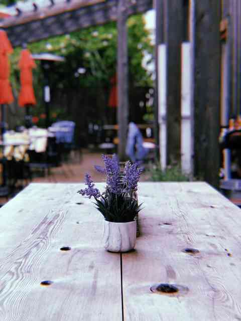 Wooden table with lavendar plant decor