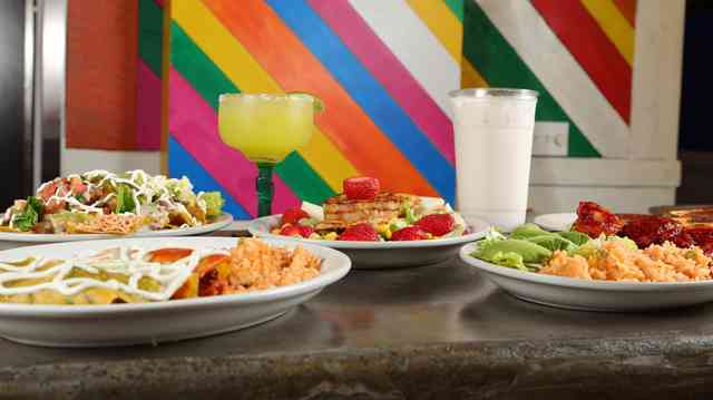 Group photo of multiple dishes prepared at Los Mayas