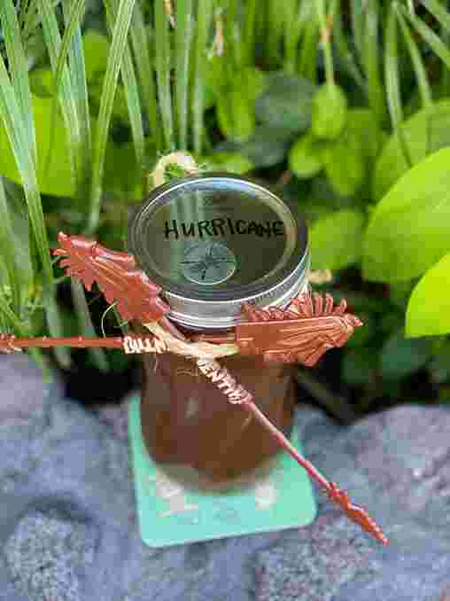 Hurricane (16 oz)