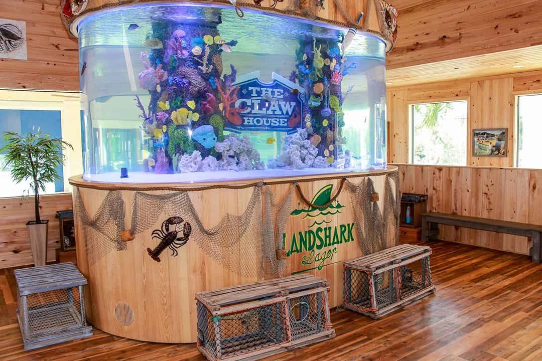 Aquarium instide the Claw House