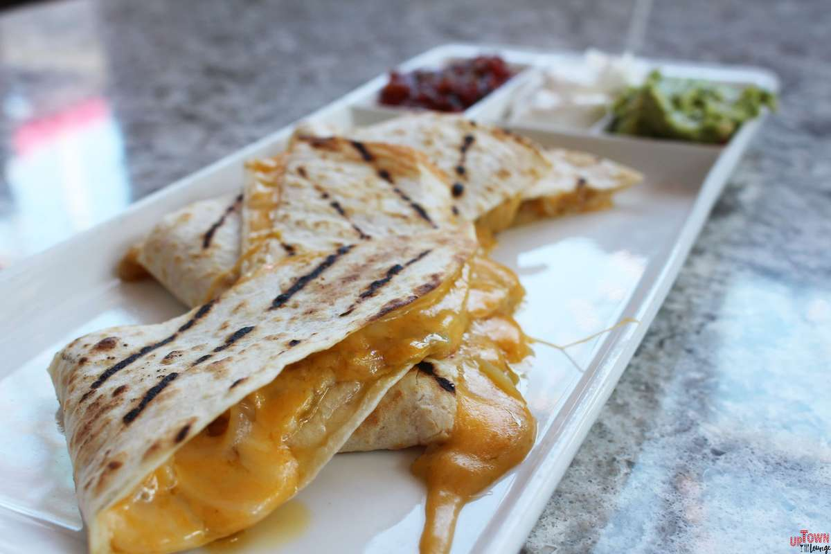 Grilled chicken & Cheese Quesadilla