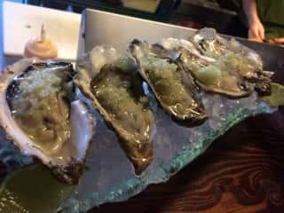Kachemak Bay Oysters