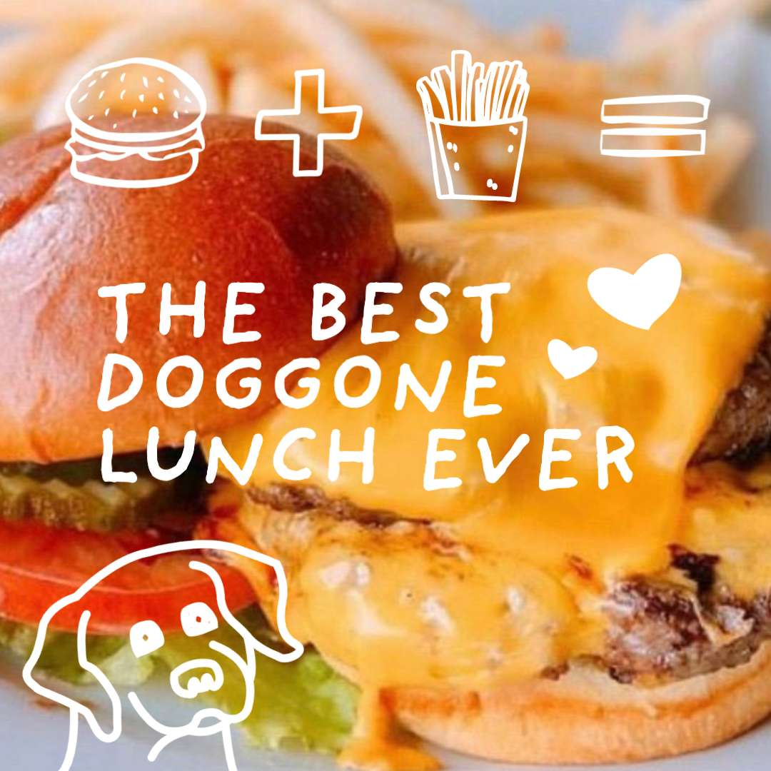 Best doggone lunch ever