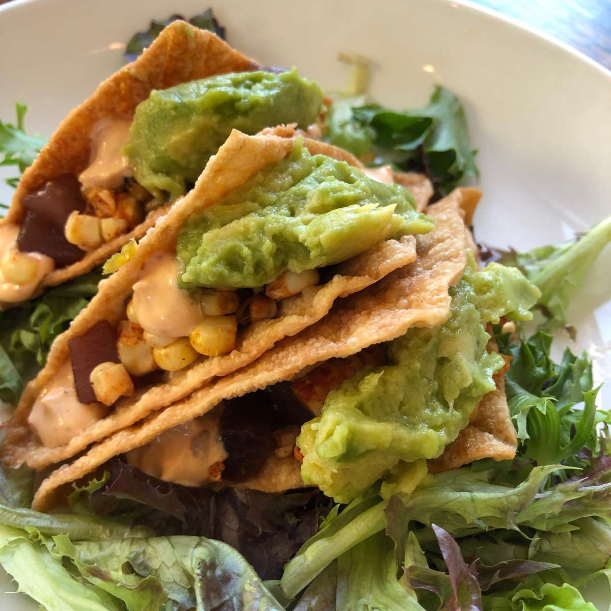 Wonton Tuna Taco