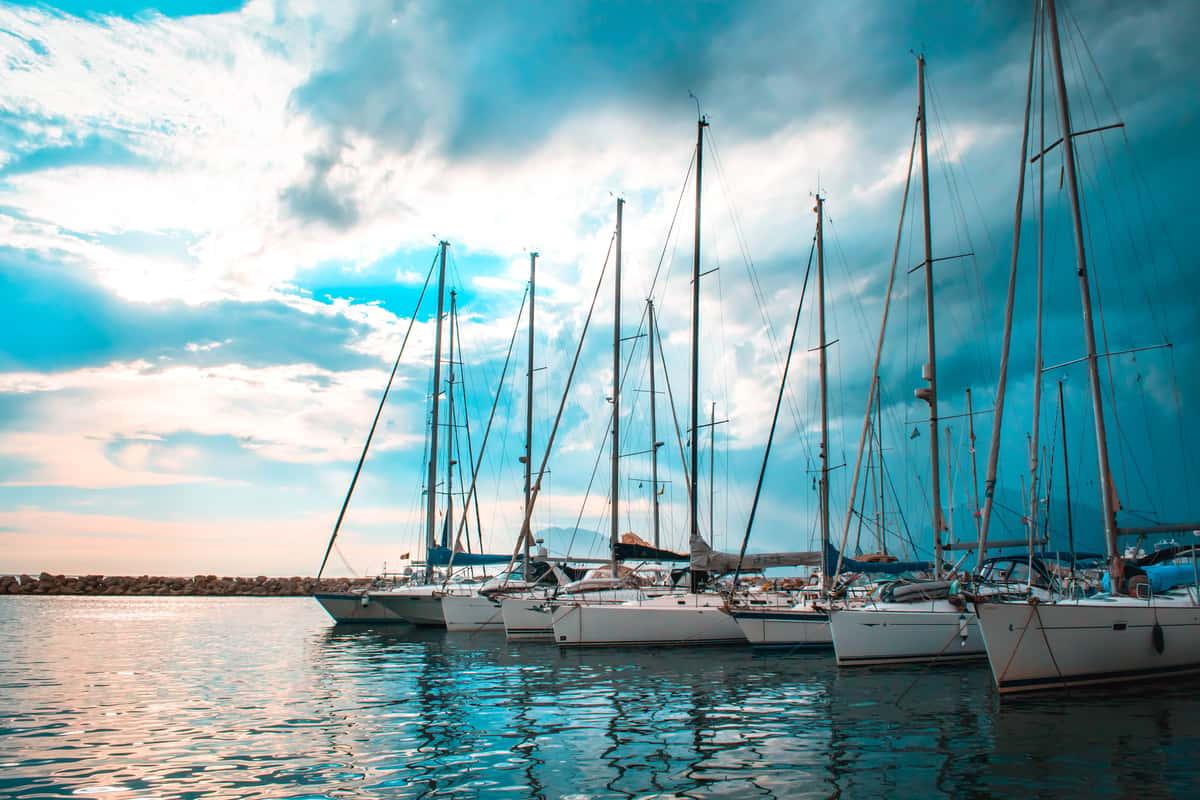 boats in harbor