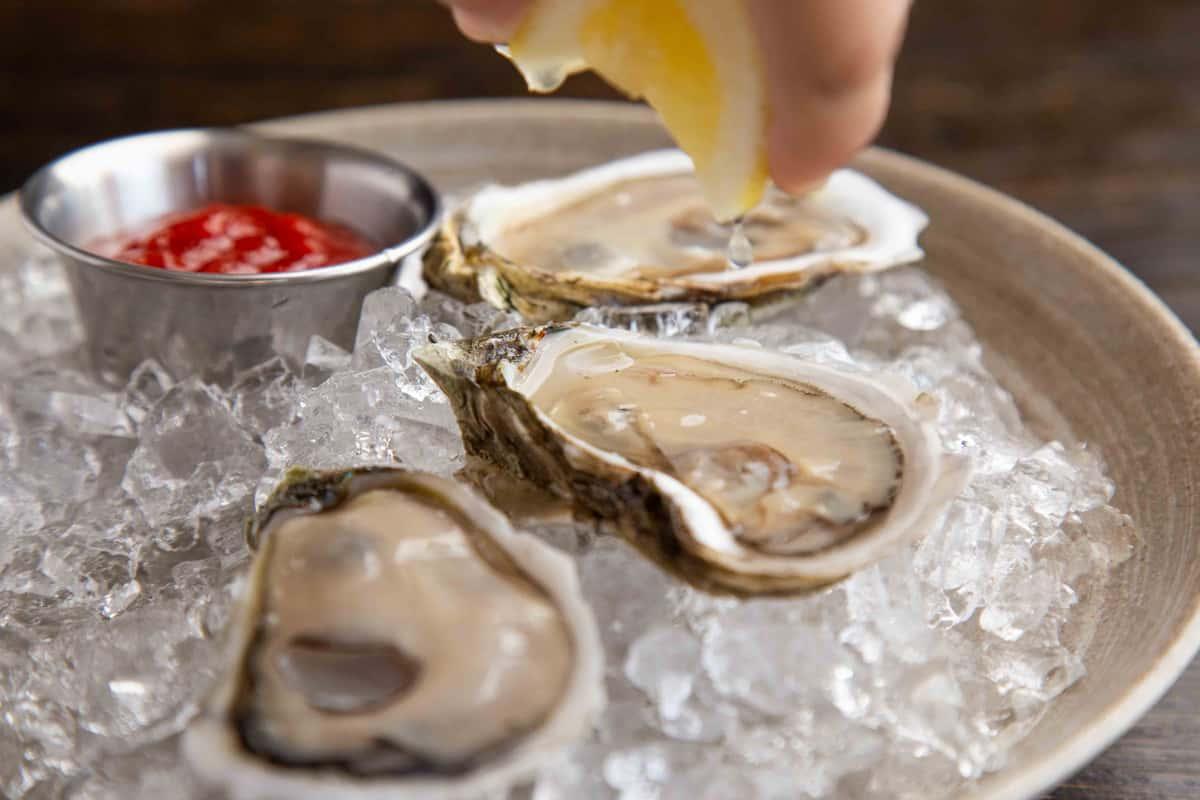 6 Duxbury Stand Oysters, MA