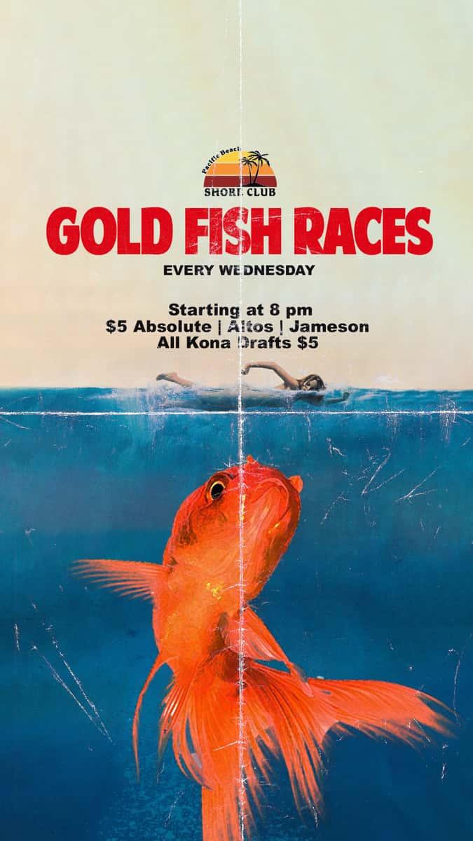 Gold Fish Race