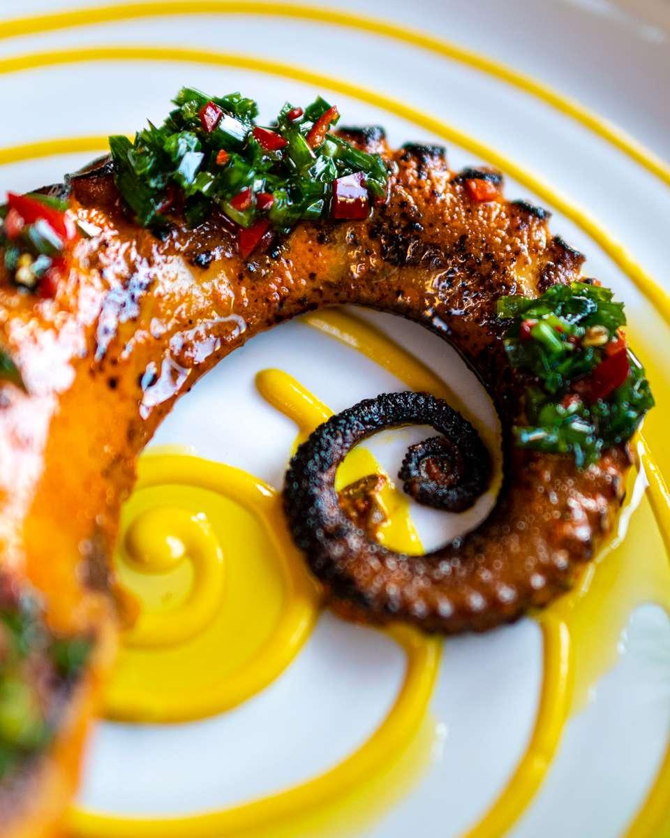 Tandori Octopus