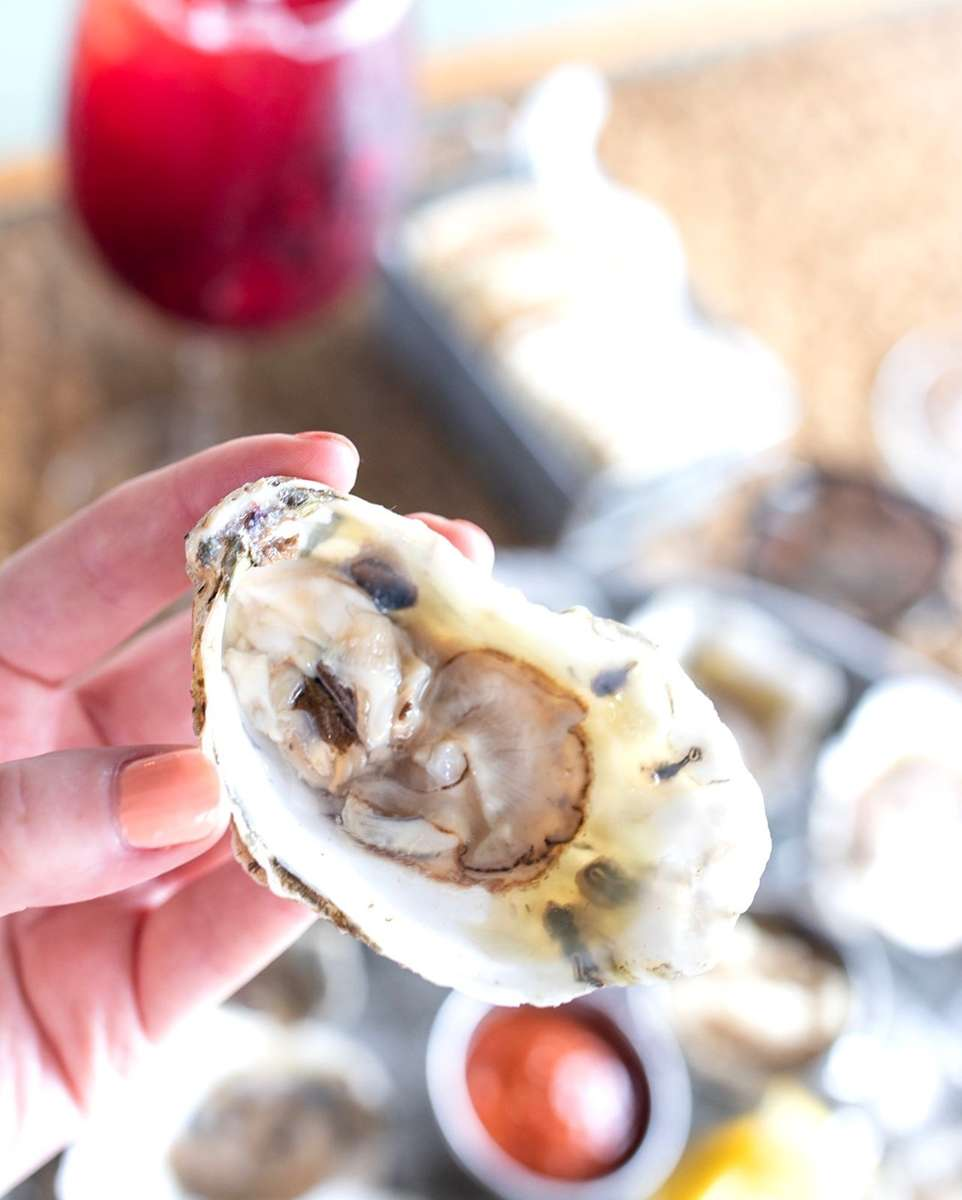 East Coast Oysters on the Half Shell