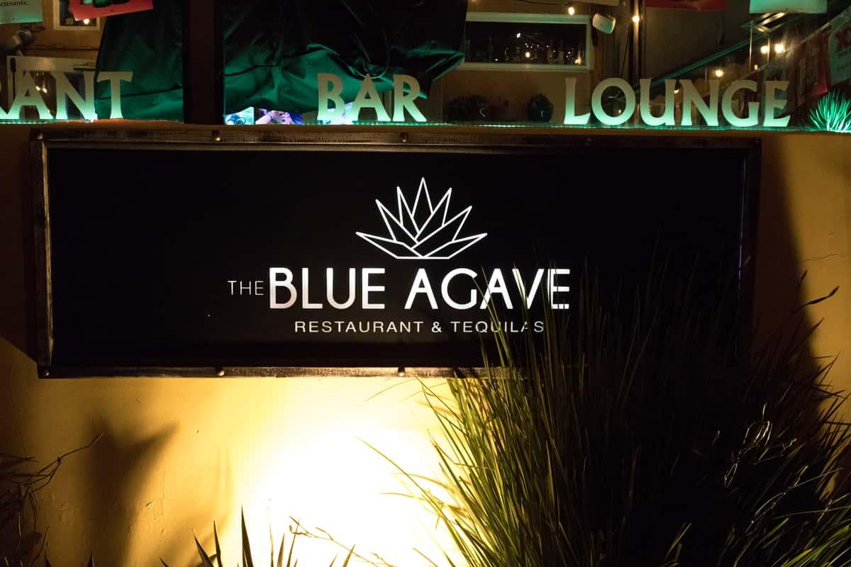 blue agave logo