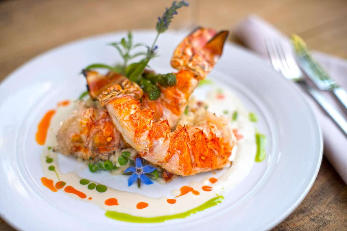 Grilled Spiny Lobster & Vegetable Risotto
