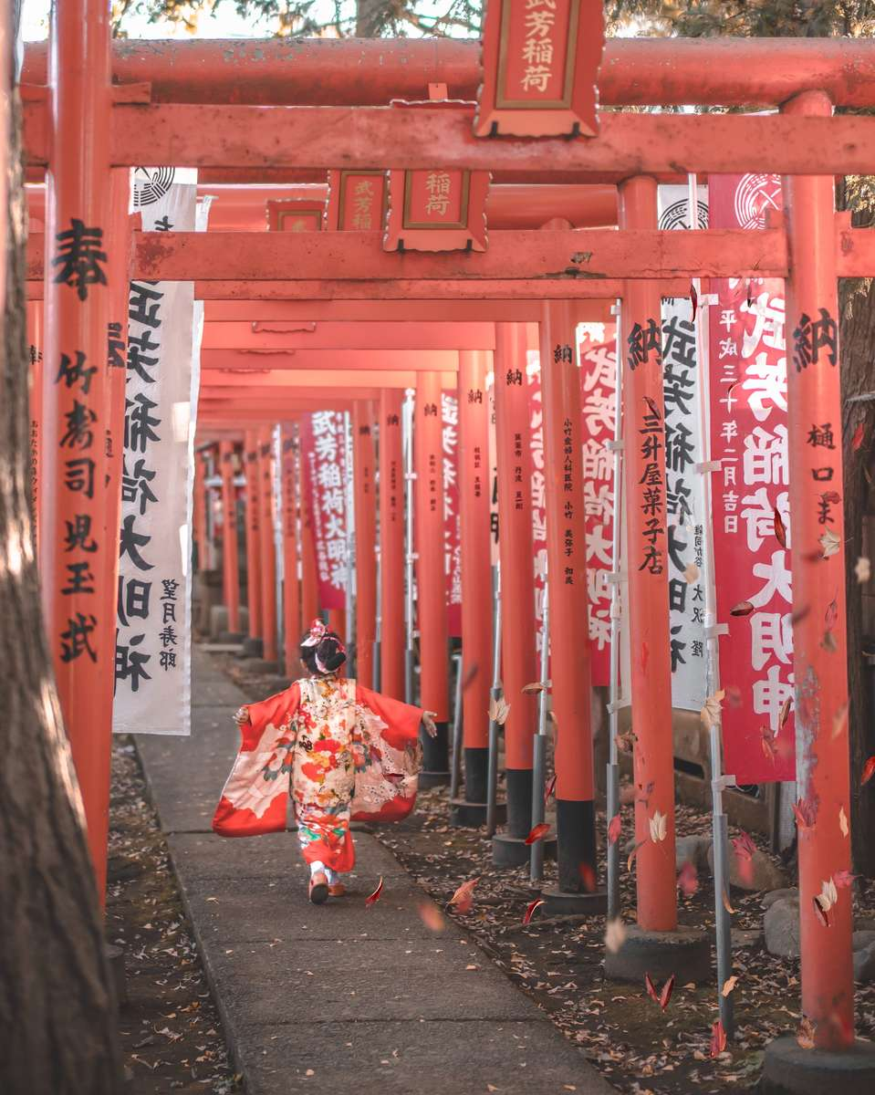November 15th: Shichi Go San